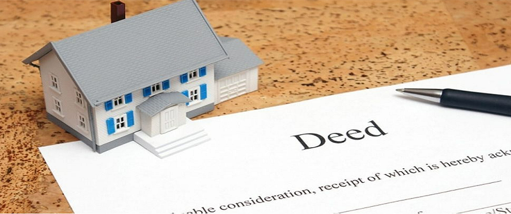 Property Title Reports