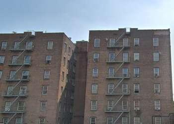 Bronx-4-416600_2512706.jpg