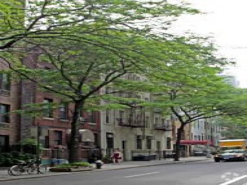 Midtown-West-1D-212896_56134555.jpg